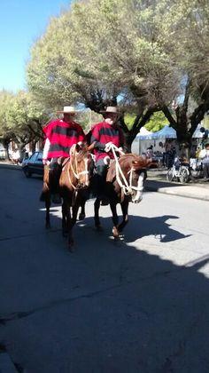 Huasos de Santa Cruz