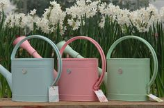 pink, blue, green and WHITE!  My fav's all lined up!