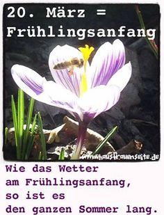 Der 20. März ist meist der Frühlingsanfang. Und achtet mal darauf: So, wie das Wetter am 20. März ist, ist es dann auch im Sommer! #Frühling #Frühlingsanfang