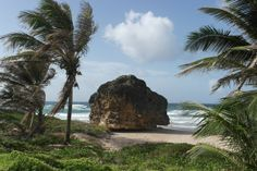 Cattlewash Beach #barbados #beach #strand #carribean #karibik #travel #urlaub #holidays #island