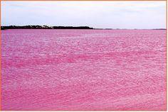 Pink Lake is a salt lake in the Goldfields-Esperance region of Western ...600 x 403 | 71KB | 1.bp.blogspot.com  Australia