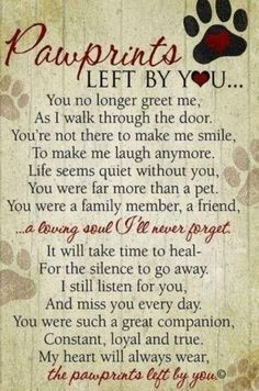 Beautiful words of sympathy for the loss of a dogs or cat. wall plaque featuring our Pawprints Left by You poem written by Teri Harrison. Our pet loss poem is the ideal gift for those coping with the loss of a pet. Pet Loss Quotes, Pet Quotes Dog, Dog Loss Poem, Dog Qoutes, Labrador Quotes, Chihuahua Quotes, Dachshund Quotes, Mini Dachshund, Daschund