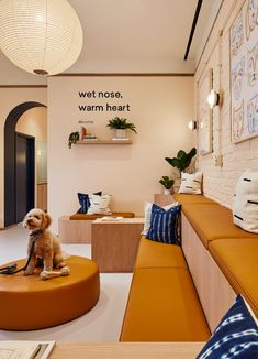 "Islyn Studio Design pour Bond Vet - Design Milk - Islyn Studio Design pour Bond Vet … ""Islyn Studio Design pour Bond Vet … You are in the right - Dog Grooming Shop, Dog Grooming Salons, Pet Cafe, Vet Office, Pet Clinic, Animal Clinic, Pet Spa, Dog Milk, Shelter Design"