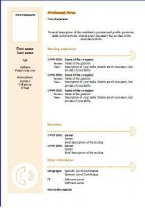 Chronological Resume Template   The Resume Info