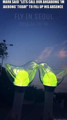 OUR LIGHT-STICK.AKA AHGABONG #FLYINSEOUL DAY1