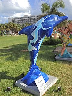 Coral Dolphin