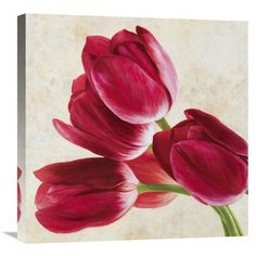 """Global Gallery 'Tulip Concerto II' by Luca Villa Painting Print on Wrapped Canvas Size: 24"""" H x 24"""" W x 1.5"""" D"""