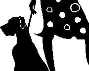SixFifteen Couture - St. Thomas U.S.V.I.
