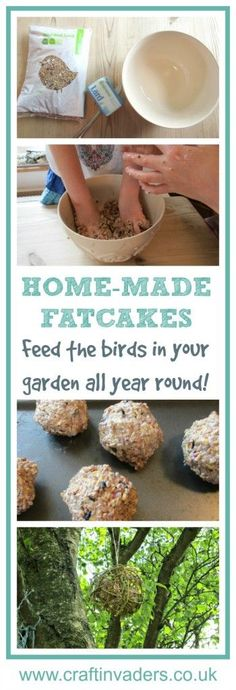 Our home-made Willow bird feeder and home-made Fat Cakes are a great way to feed the birds in the trees.