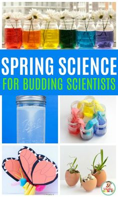 These spring science experiments are the best experiments to do in the classroom or at home in the spring! Spring science activities for kids will help make the best spring science projects and spring science fair experiments! Kindergarten Science Experiments, Science Fair Projects, Science Lessons, Art Projects, Science Activities For Kids, Preschool Science, Science For Kids, Spring Activities, Stem Activities
