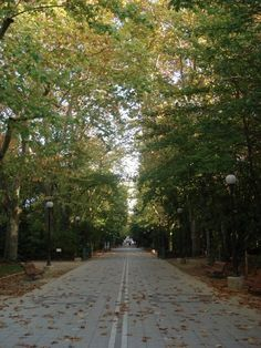 Campo Grande. Valladolid, Spain. I used to run through this park every day. Oh how I miss you!