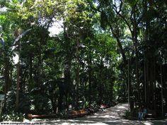 Parque Trianon (Tenente Siqueira Campos)