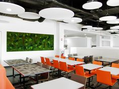 Agencement végétal, végétaux stabilisés, mur végétal, tableau végétal, mousse stabilisée. Réalisation Adventive. Interior plant Designer #moss #greenwall #murvégétal #green