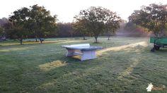Pingpongtafel Afgerond Groen bij Camping De Toekomst in Renesse