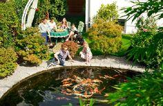 Gardenplaza - Schonende Pflegeprodukte schaffen ausgewogene Verhältnisse im Teich - Klar, gesund und artgerecht