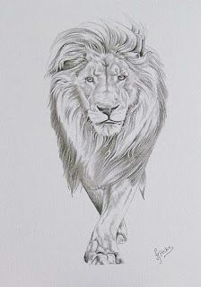 lion sketch graffiti design at Graffiti Art Design