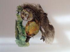Insetto inglobato da gocce di resina (fase formazione ambra con inclusione). Acrilico e acquerello su carta cotone