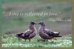 Love is reflected in love. Mary Baker Eddy