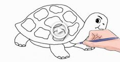 How to Draw a Turtle Easy Step by Step Hare & Tortoise, Tortoise Drawing, Tortoise Turtle, Easy Turtle Drawing, Dog Drawing Simple, Drawing Ideas, Easy Drawings, Pencil Drawings, Turtle Silhouette