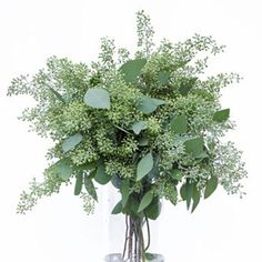 Note to self- add Seeded Eucalyptus Flower as greenery to bouquet. Gives a light airy look to bouquets and arrangements