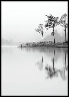 Svarthvit fotoplakat med natur.