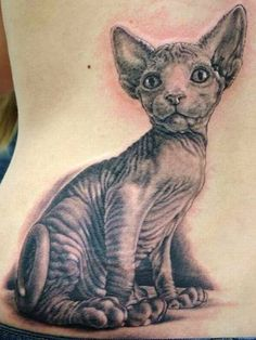 i adore animal portrait tattoos and sphynx.