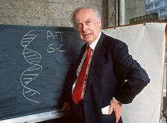 James D. Watson subastó su medalla del Premio #Nobel http://shar.es/13XZpO #Ciencia #Curiosidad