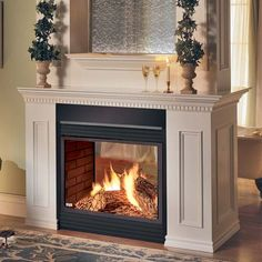 two sided fireplace | SALE! Napoleon 2-sided See-Through Gas Fireplace