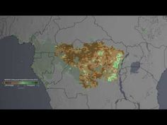 Large-scale decline of world's second-largest tropical rainforest, Congo by The Watcher on April 23, 2014