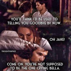 Breaking Dawn part 1 ~ Bella and Jacob