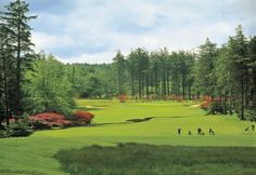 Society details for De Vere Slaley Hall   Golf Society Course in England   UK and Ireland Golf Societies