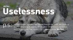 Image result for bamboobear posters project