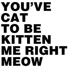 Looking for the You've Cat To Be Kitten Me Right Meow Shirt? Love Me Quotes, Wise Quotes, Quotable Quotes, Funny Quotes, Wise Sayings, Funny Facts, Funny Signs, Crazy Cat Lady, Crazy Cats
