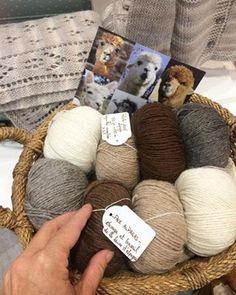 coton et gourmandises: Un trendy châle en laine d'Alpaga