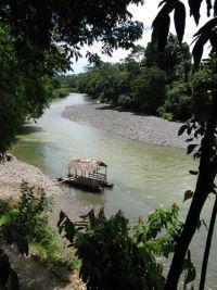 Gunung Leuser National Park Tangkahan North Sumatera