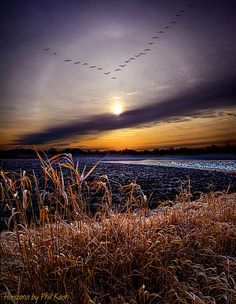 """""""Horizons"""" ~ Photography  by Phil~Koch, via Flickr"""