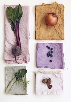 Learn to dye — Botanical Threads How To Dye Fabric, Fabric Art, Dyeing Fabric, Fabric Dyeing Techniques, Tie Dye Crafts, Diy And Crafts, Shibori, Natural Dye Fabric, Natural Dyeing