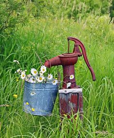 old water pump and bucket at the homestead au pluskwik paul Garden Junk, Garden Yard Ideas, Well Pump Cover, Old Water Pumps, Sunflowers And Daisies, Rustic Garden Decor, Water Well, Old Farm, Mellow Yellow