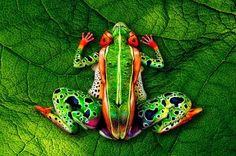 Body Art inspirada pela Natureza • Jardim de Siguta •