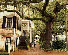 .savannah #sight/ historic