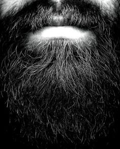 photography + beards close up - Google Search