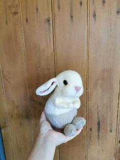 Holland Lop Bunnies, Lop Eared Bunny, Baby Bunnies, Bunny Rabbit, Baby Knitting, Cute Babies, Custom Design, Toy, Beige