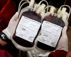 Casablanca's Blood Reserve Will Run Out in Less Than 5 Days Khafif Mehndi Design, Boston Marathon Bombing, Hospital Doctor, Run Out, Blood Donation, Young Blood, Aging Process, Health, Casablanca