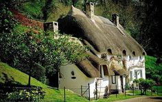English cottage- I love thatched roofs
