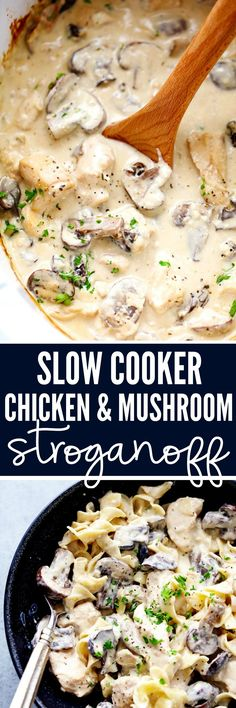 Slow Cooker Chicken and Mushroom Stroganoff takes just minutes to throw in the slow cooker! It is so creamy and delicious and will become an instant family favorite! Chicken In Crockpot Recipes, Crockpot Chicken And Noodles, Slow Cooker Recipes Family, Cream Cheese Crockpot Chicken, Slow Cooker Dinners, Slower Cooker Recipes, Easy Healthy Crockpot Recipes, Chicken And Cheese Recipes, Crockpot Chicken Thighs