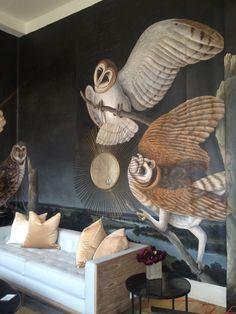 Owl wall