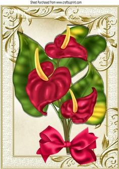 Pretty exotic Anthuriam flower with bow in ornate frame A4 on Craftsuprint - Add To Basket!