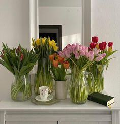 Spring Aesthetic, Flower Aesthetic, My New Room, My Room, Cactus Plante, Aesthetic Pictures, Room Inspiration, Planting Flowers, Greenery