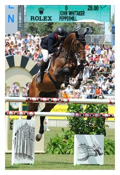 Equestrian John Whitaker and Peppermill #ShowJumping. Nice scope.