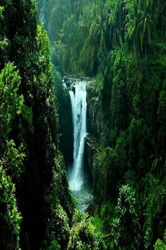 Tegenungan Waterfall, Ubud Bali - oh my heck. Places Around The World, Oh The Places You'll Go, Places To Travel, Places To Visit, Around The Worlds, Tourist Places, Lombok, Kuta Bali, Voyage Bali